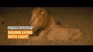 Activism August: Richard cracked the lion code in Kenya
