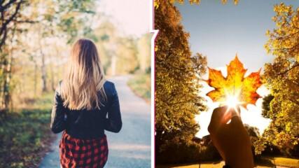 Есента идва с почти летни температури! Какво време ни очаква тази седмица?
