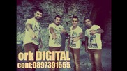 New Ork Digital 2016 Barili Mi Chayuri tel 0897391555