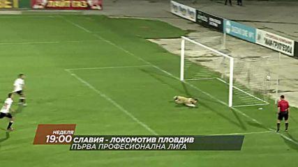 Футбол: Славия – Локомотив Пловдив на 13 май по DIEMA SPORT