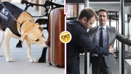 Край на мистерията: Какво се случва с конфискуваните на летищата вещи? Ето и отговорите