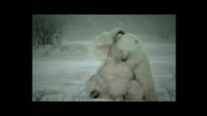 мечок