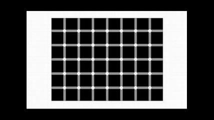 pquic - Minimal Experiment (mashup)