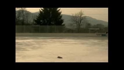 Funny Skating Video
