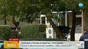 Какви са версиите за стрелбата в София?