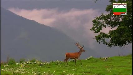 България - През дивия Балкан... част 3
