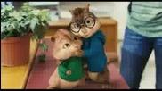 funny chipmunks...