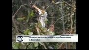 Поредна експлозия във въгледобивна мина в Колумбия
