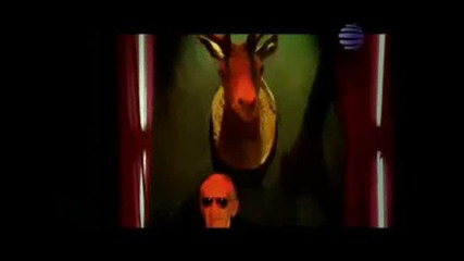 Kameliq - Orgasm