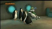 Пингвините От Мадагаскар Бг Аудио Цял Епизод 19.10.2014