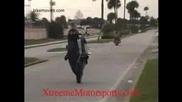 Xtreemmotorsports - V44 - Mattnickdenny