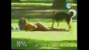 Скрита Камера - Куче Лиже Дупета