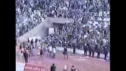 Levski - Fans
