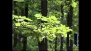 """Връчват призове за зелен бизнес по ОП """"Околна среда"""""""