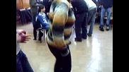 Учителка Танцува