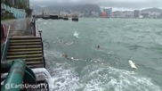 Плуване край хонг конг по време на тайфун