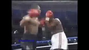 Boxing Greatest Knockouts Boxers & Legends - Sport Of Kings