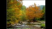 Силвия - Есента дойде - импресия
