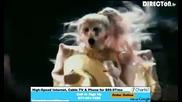 Lady Gaga - Born This Way Live Grammys - 2/13/2011
