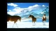 Реклама - Budweiser Коне В Снега