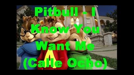 Chipmunks Pitbull - I Know You Want Me lyrics - mixed