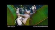 Мадагаскар - Размърдай Се