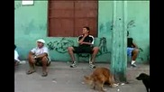 Футбол - Freestyle Street Soccer