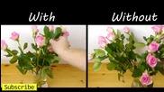 Как да подредим по-красиво цветята във вазата ни