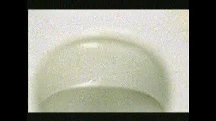 Domestos - микробите