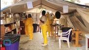 Ebola Crisis 'harming Malaria Fight'