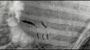 (превод) Alter Bridge - Addicted To Pain (new Video 2013)