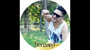 10.bernat - Manglum zivoto tuja Album.(dj.otrovata.mix).2013