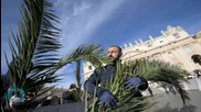 Worshippers Throng to Jerusalem and Bethlehem Sites for Palm Sunday in Holy Land