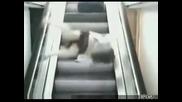 Жена се пребива на ескалатор