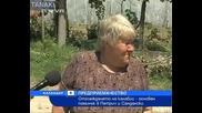 17 Тона Джоинт за едно лято са били Ожънати В Петрич и Сандански - Новa Тв 04.07.10