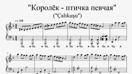 """Çalıkuşu"" - Esin Engin (piano sheet music)"