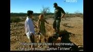 Ловци на митове - Отсичане на дърво с картечница - с Бг превод