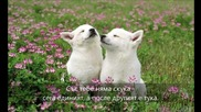 За Близнаците с любов - стих, пожелание, зодии