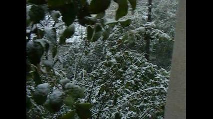Първият сняг, есен -2014 г.