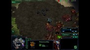 Starcraft 2 - Team vs Team (4 - 4)