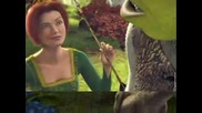 Shrek & Company