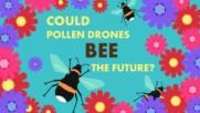 Дронове срещу пчели - кой ще победи?
