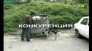 Тутурутка-чакаи малко да видиш асен как изритва кучето на пътя