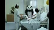 Никога не казвай Не на панда :)