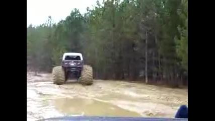 Monster trucks in the forest