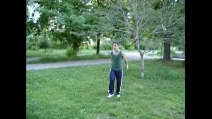 Treeflip - Aranuir