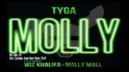 New ! Tyga ft. Wiz Khalifa & Mally Mall - Molly
