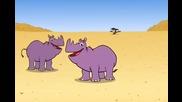 The Rhino Song