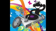 Dj Skiper Electro House (crazy mix) 2011