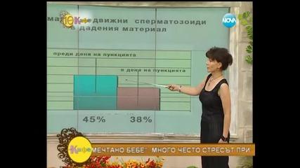 Как протича лечението за забременяване при Надя и Миро - На кафе (09.07.2014г.)